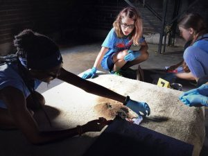 Photo of campers participating in a simulated activities